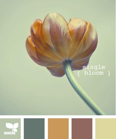 SingleBloom (400 x 481)